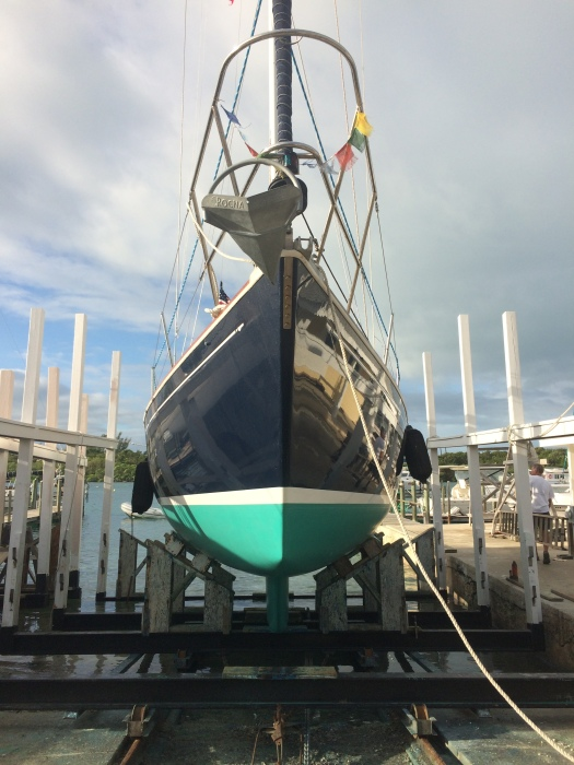The bow of the newly painted boat.